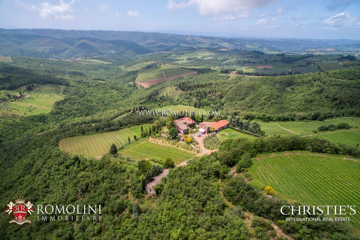 Vườn nho vì Bán tại Tuscany - CHIANTI CLASSICO: WINNING WINERY WITH 10 HA OF VINEYARDS Greve In Chianti, Ý