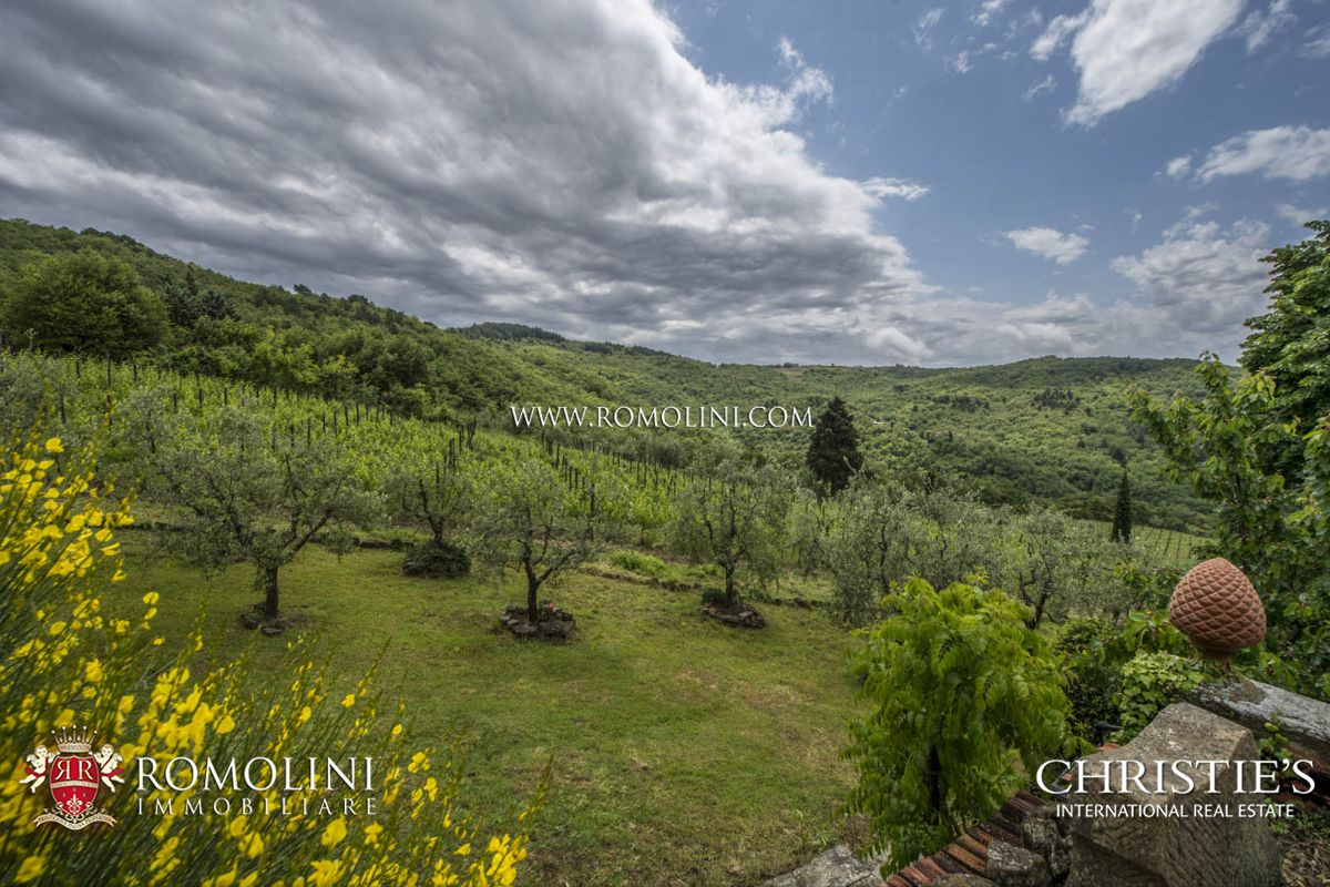 Additional photo for property listing at Tuscany - CHIANTI CLASSICO: WINNING WINERY WITH 10 HA OF VINEYARDS Greve In Chianti, Italië