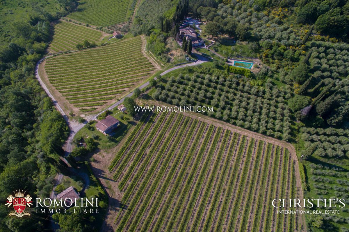 Additional photo for property listing at Tuscany - PROPERTY FOR SALE IN SAN GIMIGNANO, SIENA, TUSCANY, VINEYARDS FOR SALE San Gimignano, 이탈리아