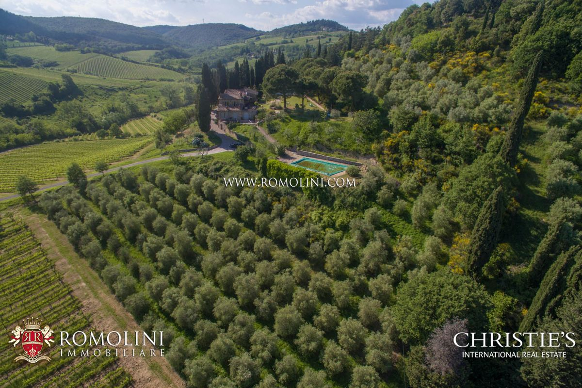 Additional photo for property listing at Tuscany - PROPERTY FOR SALE IN SAN GIMIGNANO, SIENA, TUSCANY, VINEYARDS FOR SALE San Gimignano, Italien