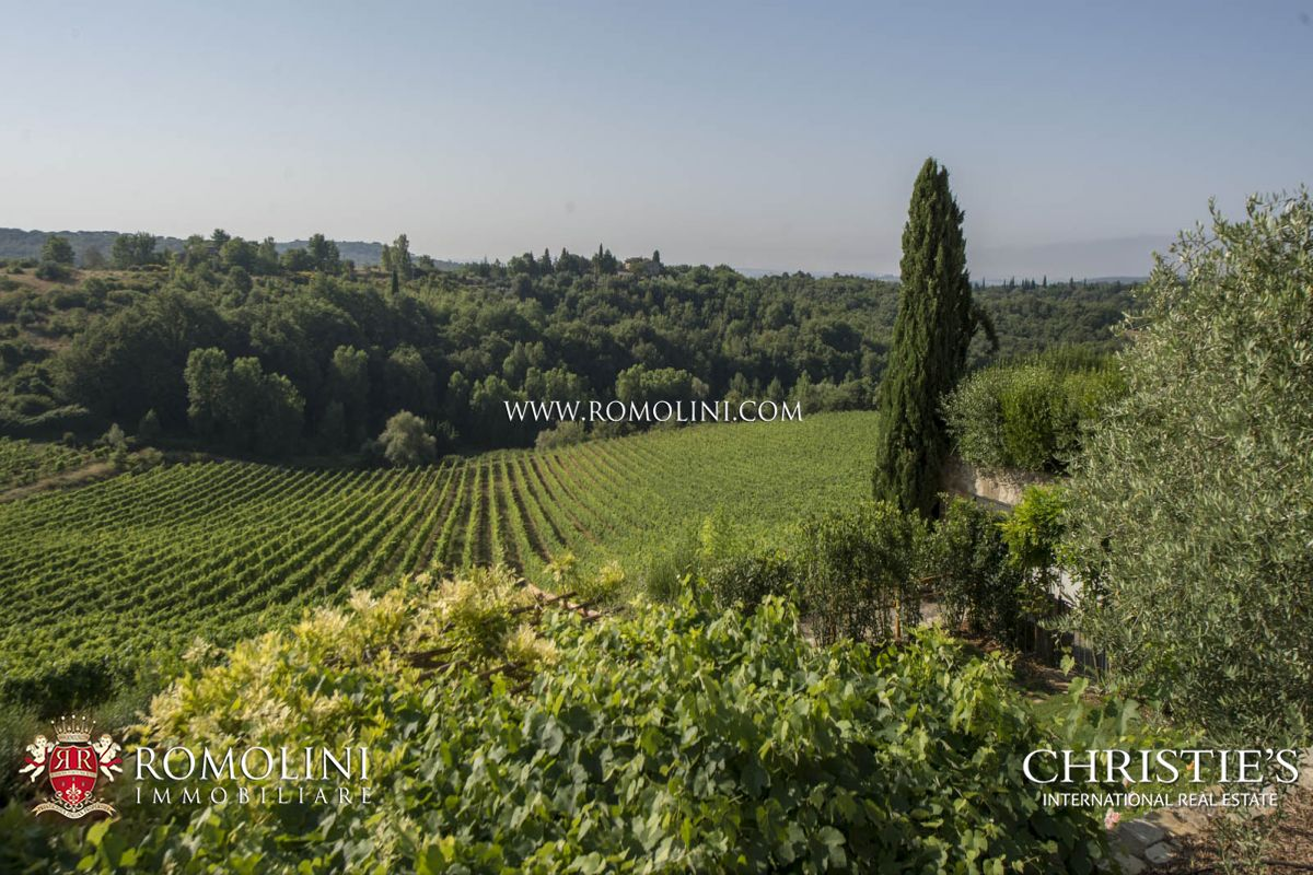 Additional photo for property listing at Tuscany - CASTLE FOR SALE ITALY, CHIANTI CLASSICO WINERY DOCG TUSCANY Gaiole In Chianti, Italia