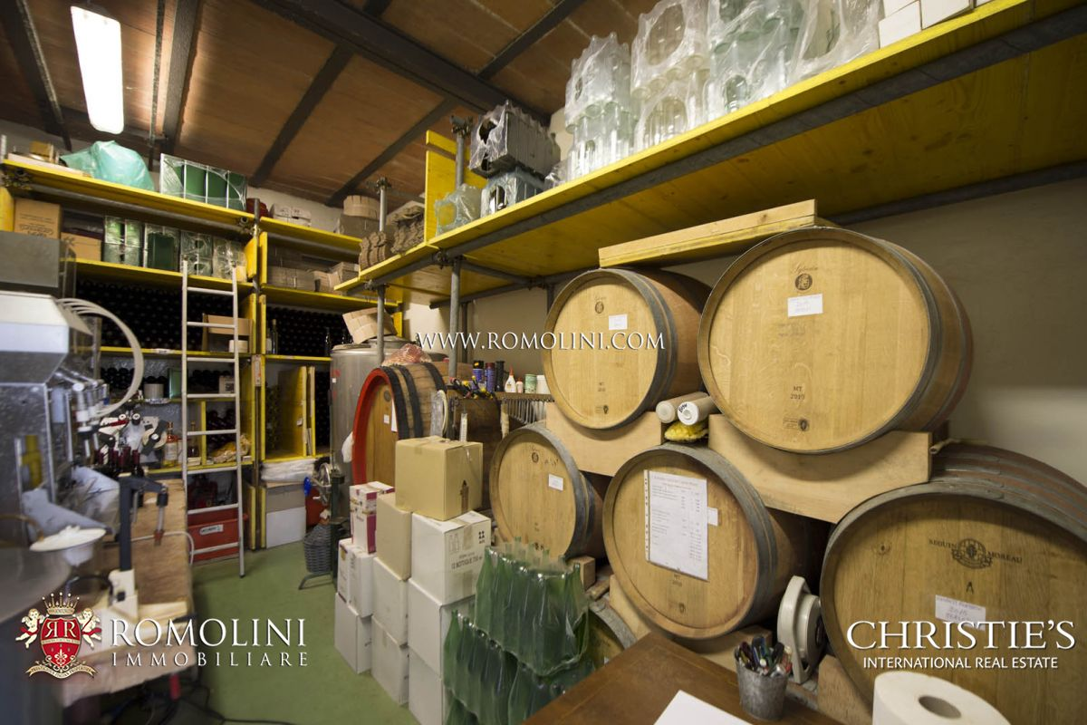 Additional photo for property listing at Tuscany - CHIANTI CLASSICO DOCG: WINE ESTATE WITH AGRITURISMO FOR SALE Castellina In Chianti, Italia