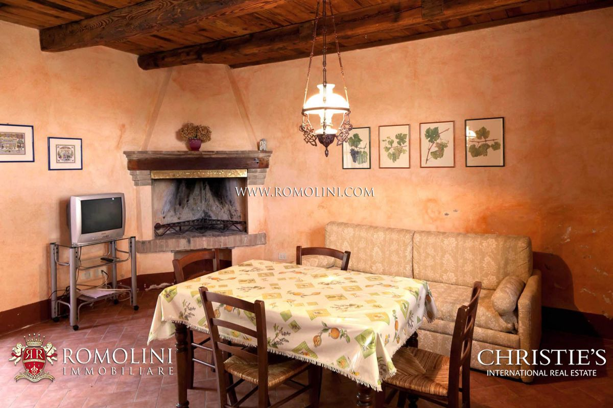 Additional photo for property listing at Tuscany - CHIANTI CLASSICO DOCG: WINE ESTATE WITH AGRITURISMO FOR SALE Castellina In Chianti, Itália