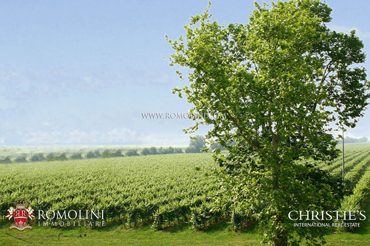 Additional photo for property listing at Veneto - VENETO, PROSECCO, WINE ESTATE WITH 93 HA OF VINEYARDS FOR SALE Venice, Ý