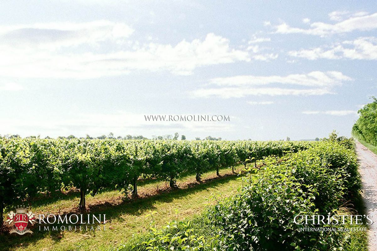 Additional photo for property listing at Veneto - VENETO, WINE ESTATE WITH 93 HA OF VINEYARDS FOR SALE Venice, Ιταλια