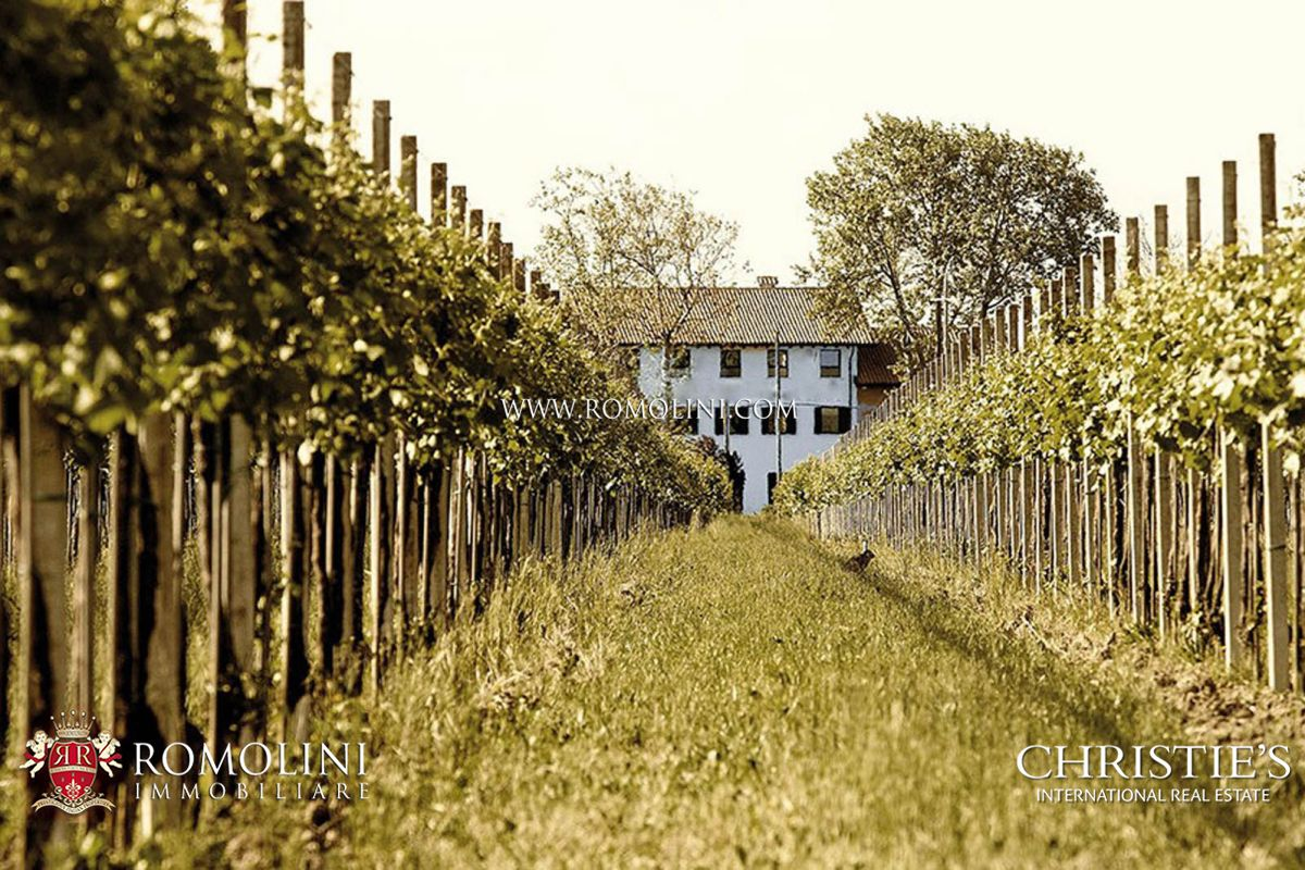 Vườn nho vì Bán tại Veneto - VENETO, PROSECCO, WINE ESTATE WITH 93 HA OF VINEYARDS FOR SALE Venice, Ý