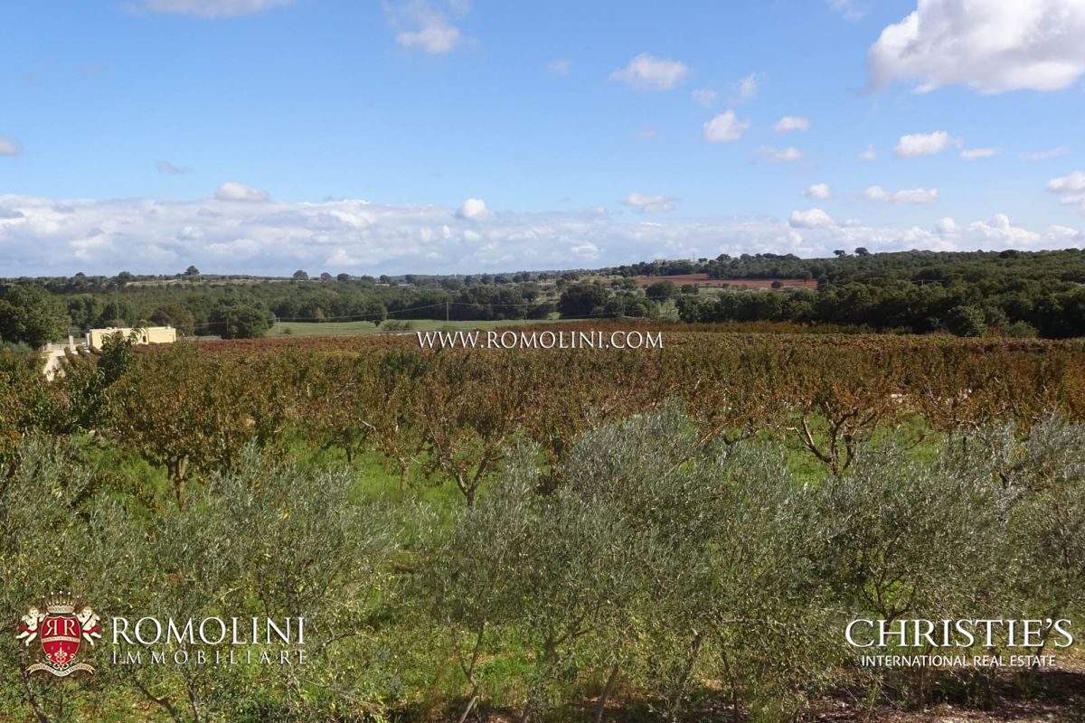 Additional photo for property listing at Apulia - ESTATE WITH AGRITURISMO AND 30 HA OF LAND FOR SALE IN BARI, APULIA Castellana Grotte, 意大利