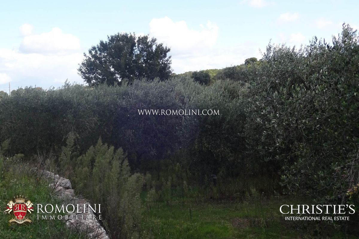 Additional photo for property listing at Apulia - ESTATE WITH AGRITURISMO AND 30 HA OF LAND FOR SALE IN BARI, APULIA Castellana Grotte, Italië