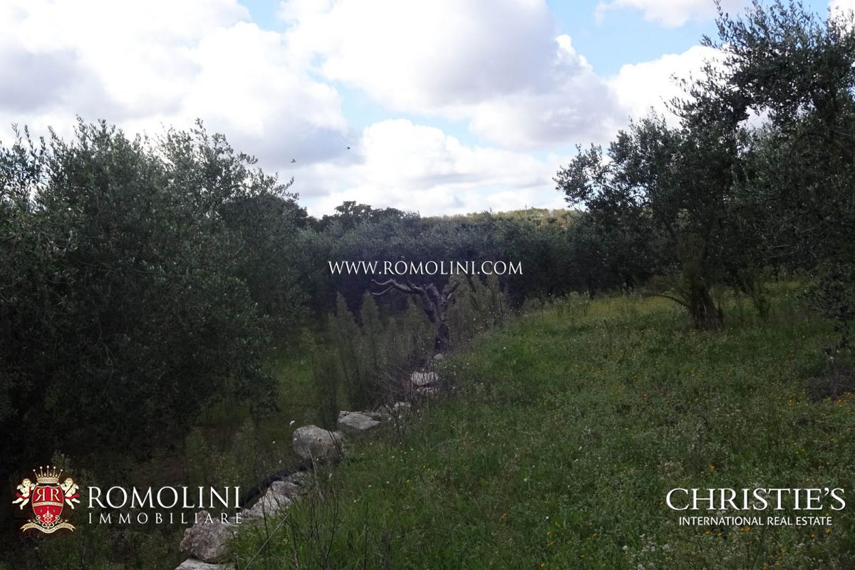 Additional photo for property listing at Apulia - ESTATE WITH AGRITURISMO AND 30 HA OF LAND FOR SALE IN BARI, APULIA Castellana Grotte, Italy