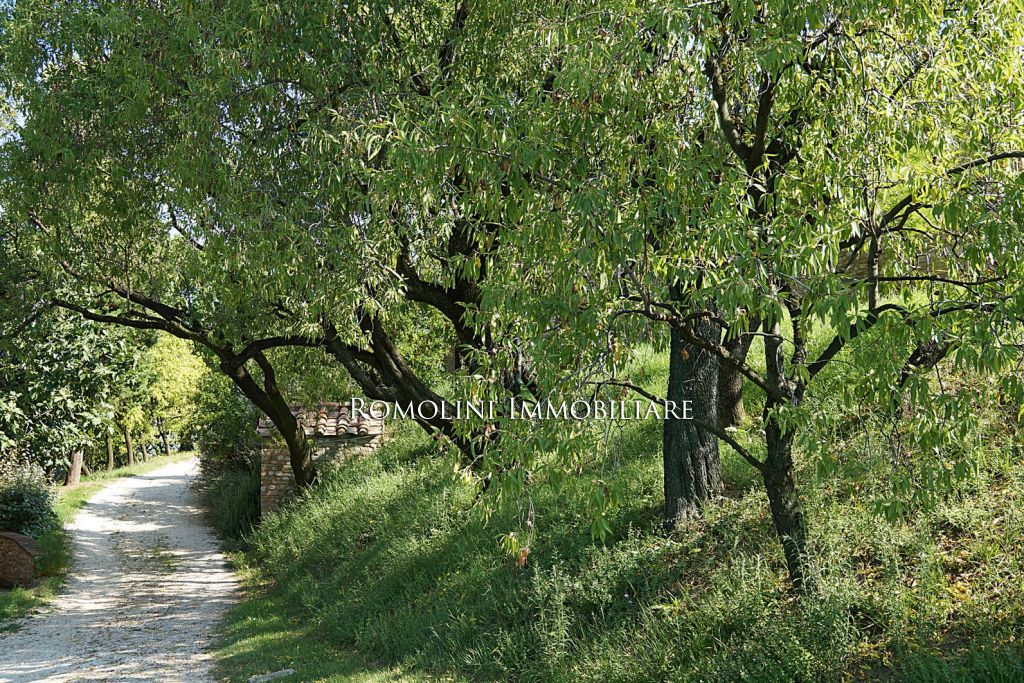 Additional photo for property listing at Tuscany - VILLA FOR SALE IN TUSCANY, VILLA WITH STUNNING VIEWS Firenze, Itália