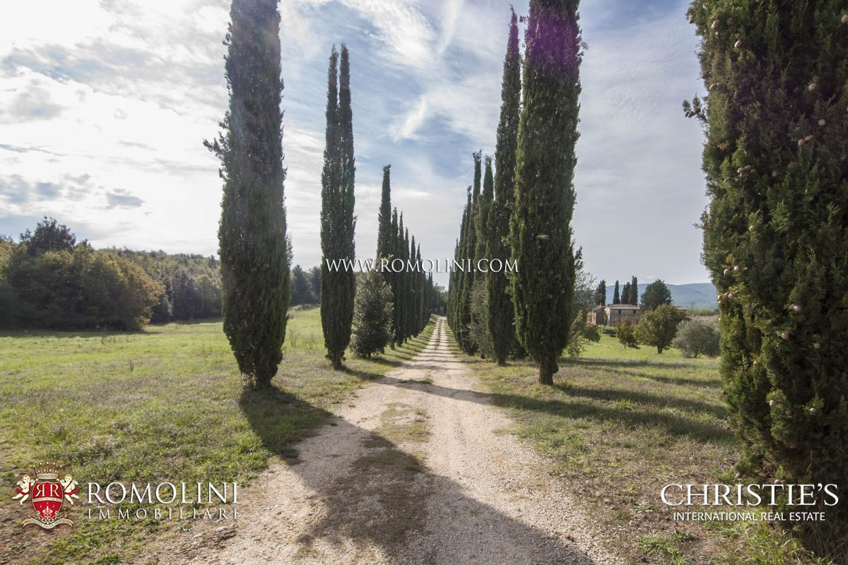 Additional photo for property listing at Tuscany - RUSTIC COUNTRY HOUSE, FARM FOR SALE IN SIENA Siena, Italie