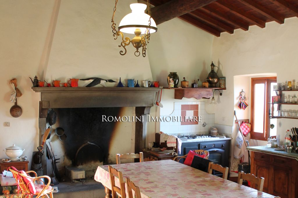 Additional photo for property listing at Tuscany - ITALIAN PROPERTY WITH PANORAMIC VIEW FOR SALE IN TUSCANY, VALDARNO Reggello, Italie