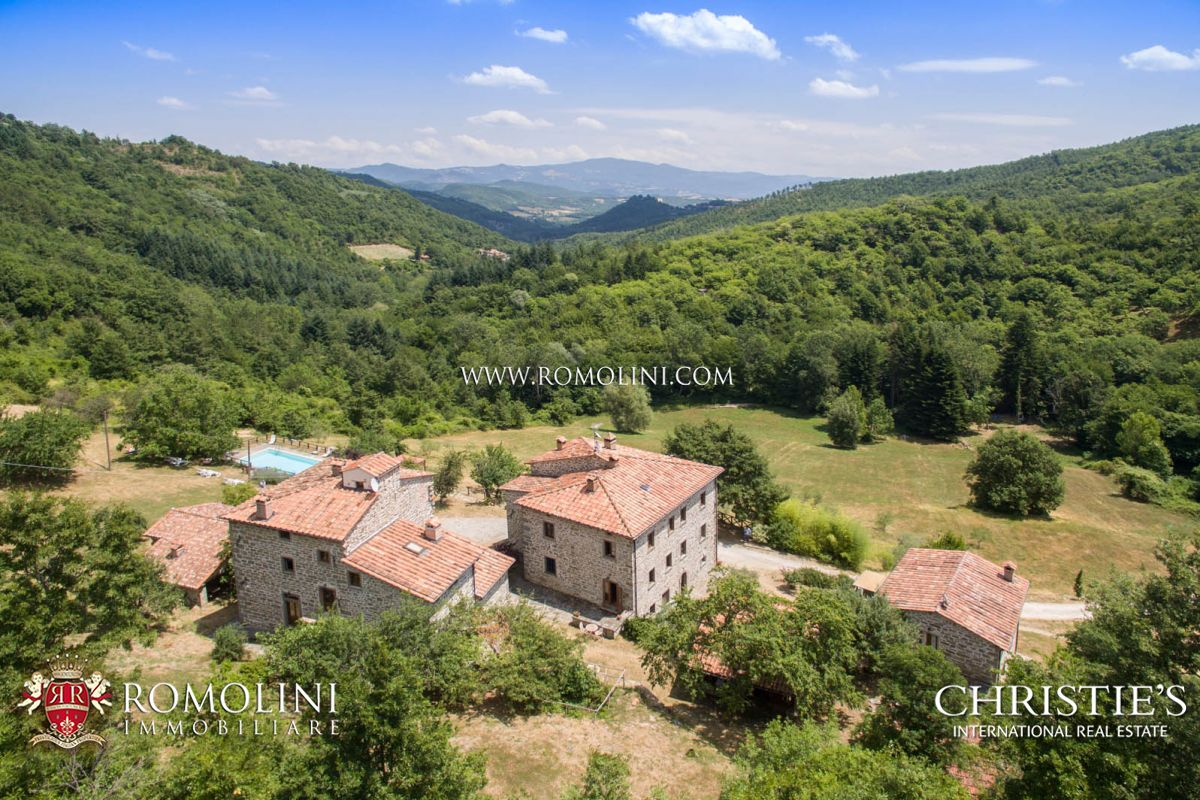 庄园 为 销售 在 Tuscany - CAPRESE MICHELANGELO, TUSCANY: ORGANIC AGRITURISMO WITH POOL FOR SALE Caprese Michelangelo, 意大利