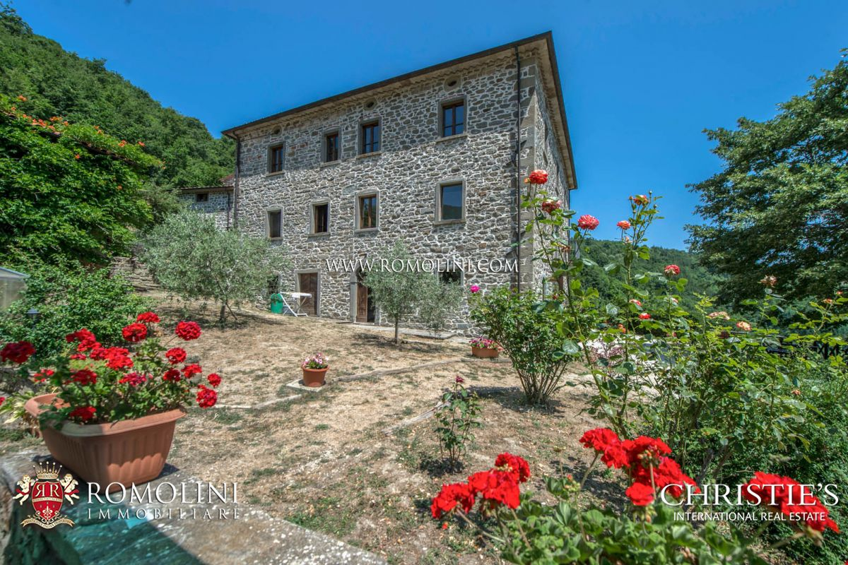 Additional photo for property listing at Tuscany - CAPRESE MICHELANGELO, TUSCANY: ORGANIC AGRITURISMO WITH POOL FOR SALE Caprese Michelangelo, 意大利