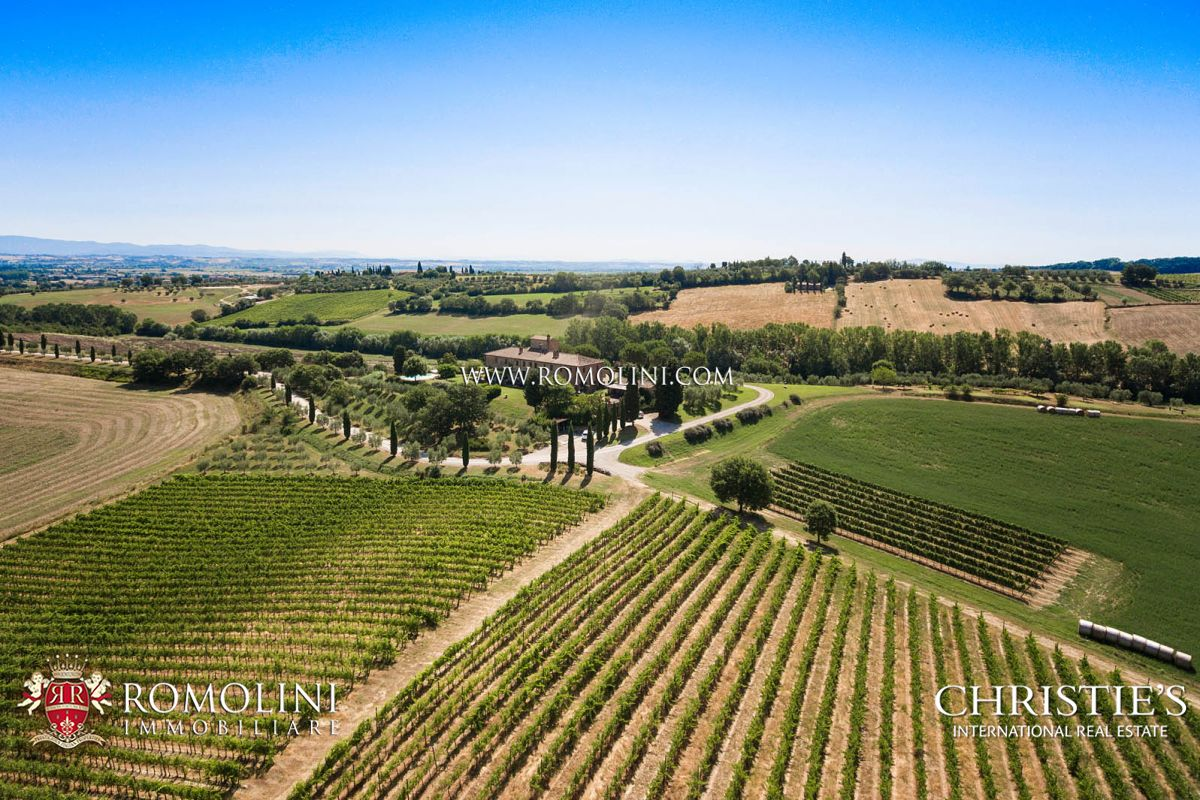 Vignoble pour l Vente à Tuscany - HOUSE WITH VINEYARD FOR SALE ON THE SIENESE HILLS, TUSCANY Torrita Di Siena, Italie