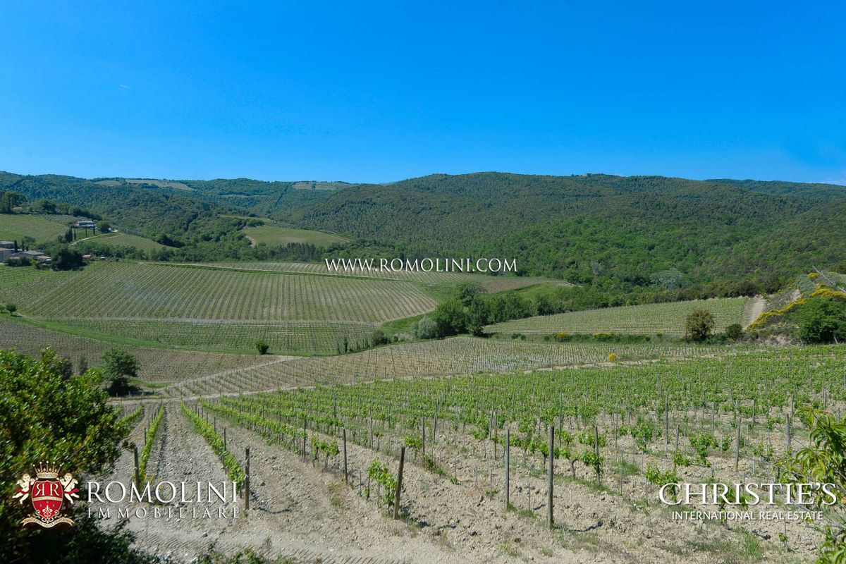 Additional photo for property listing at Tuscany - PRESTIGIOUS BRUNELLO WINE ESTATE ON THE HILLS OF MONTALCINO, TUSCANY Montalcino, Itália