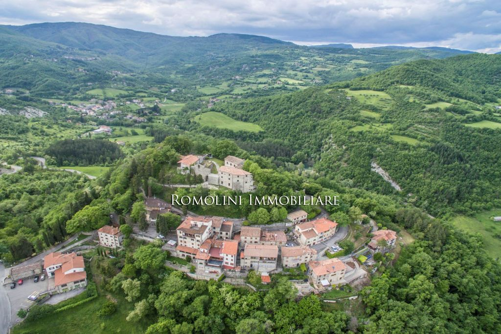 Additional photo for property listing at Tuscany - CAPRESE MICHELANGELO: RESTORED ANCIENT COUNTRY HOUSE FOR SALE Caprese Michelangelo, イタリア