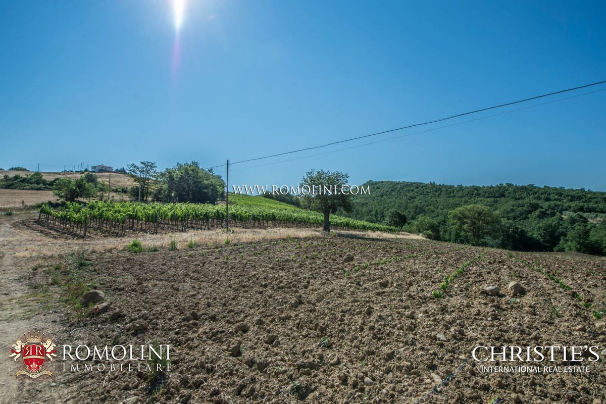 Wohnung für Verkauf beim Tuscany - WINE ESTATE WITH APARTMENT FOR SALE IN GROSSETO, TUSCANY Maremma, Italien