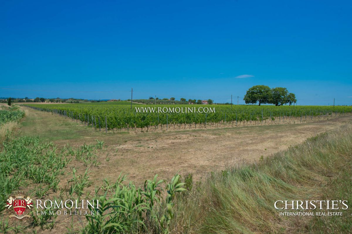 Additional photo for property listing at Tuscany - MORELLINO DI SCANSANO: 10,4 HA PRESTIGIOUS CELLAR FOR SALE 格罗塞托, 意大利