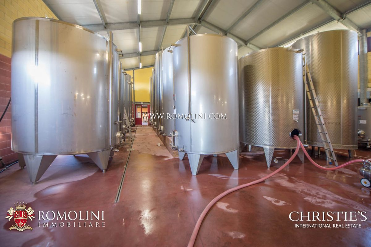 Additional photo for property listing at Tuscany - MORELLINO DI SCANSANO: 10,4 HA PRESTIGIOUS CELLAR FOR SALE Grosseto, イタリア
