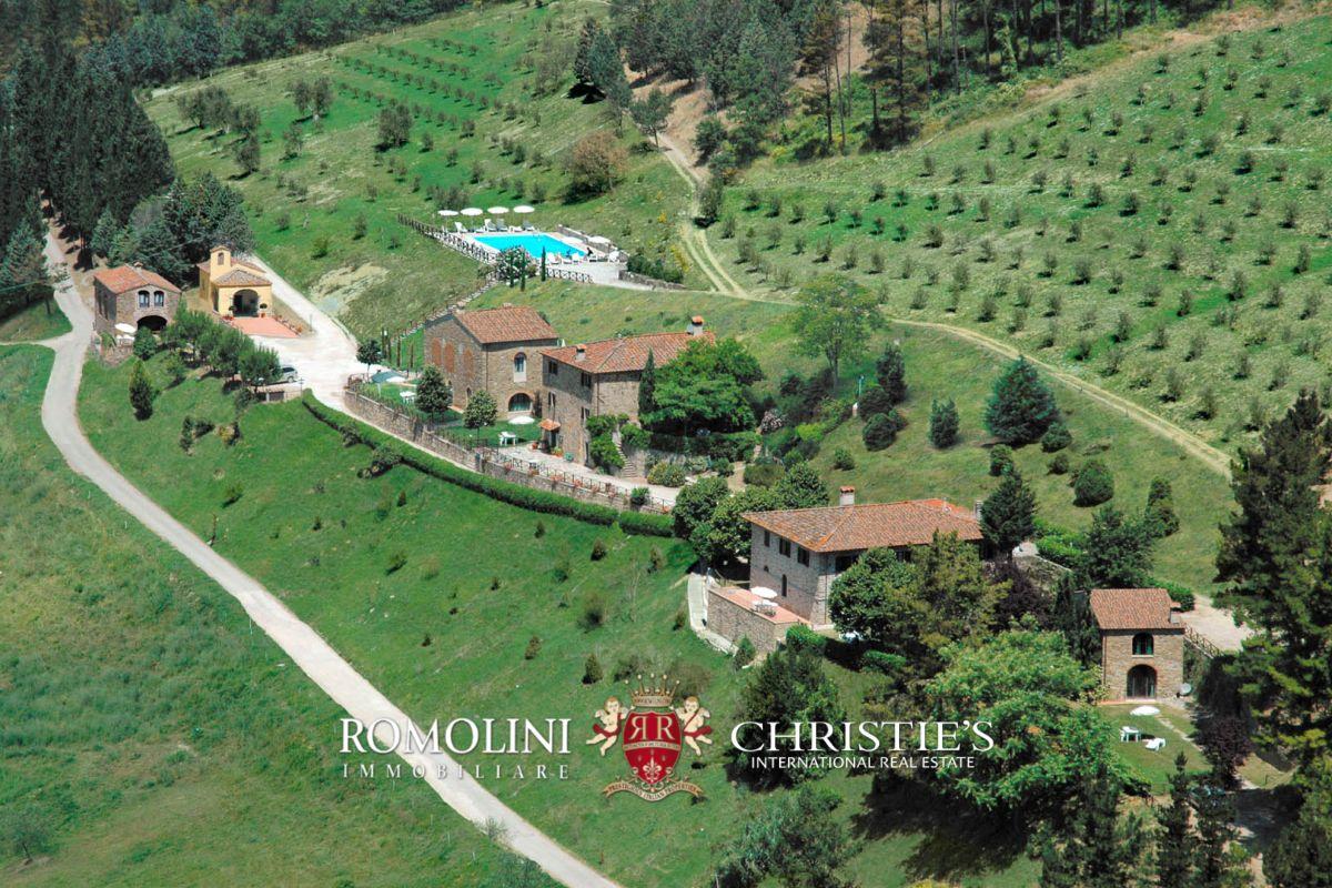 ブドウ園 のために 売買 アット Tuscany - CHIANTI: ESTATE WITH WINE-CELLAR, AGRITURISMO AND HUNTING RESERVE Firenze, イタリア