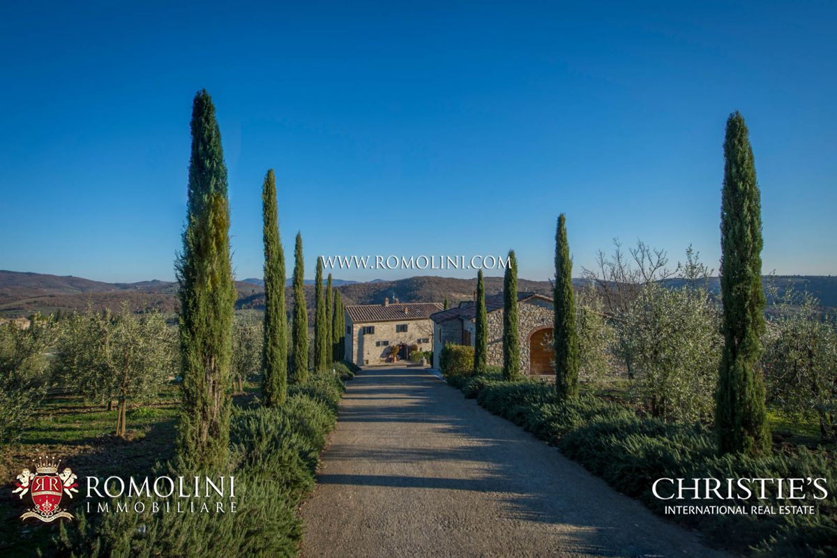 Vineyard for Sale at Tuscany - TYPICAL TUSCAN HAMLET WITH CELLAR AND VINEYARDS FOR SALE, CHIANTI CLASSICO Siena, Italy