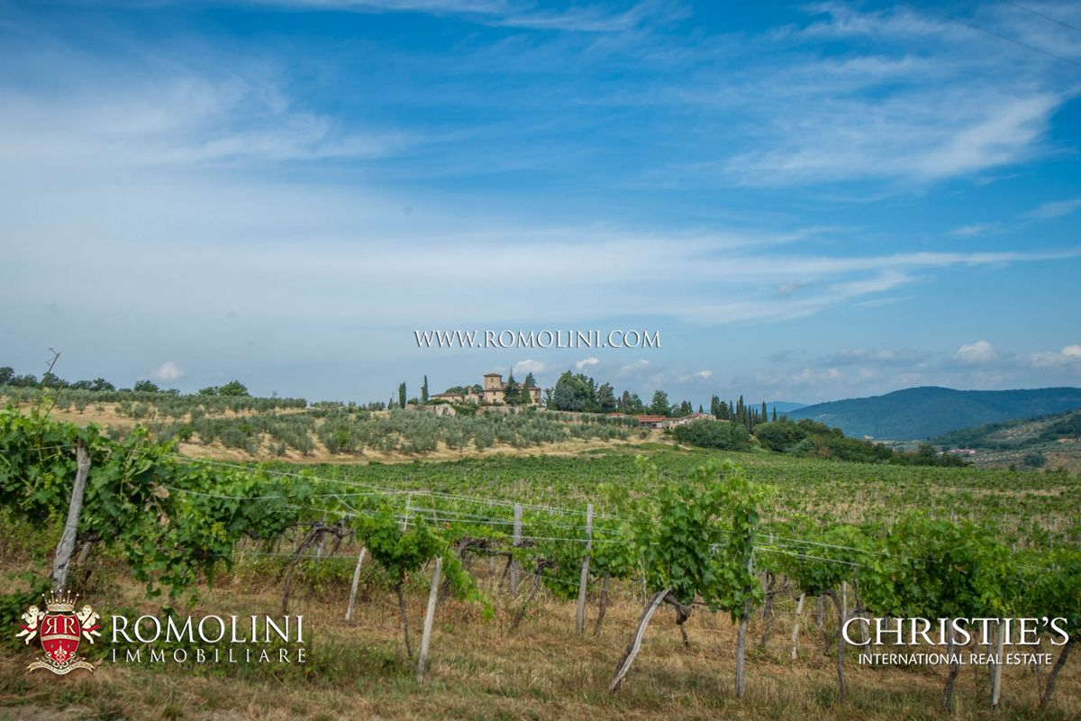 Vignoble pour l Vente à Tuscany - CHIANTI COLLI FIORENTINI: HISTORICAL ESTATE WITH WINERY Firenze, Italie