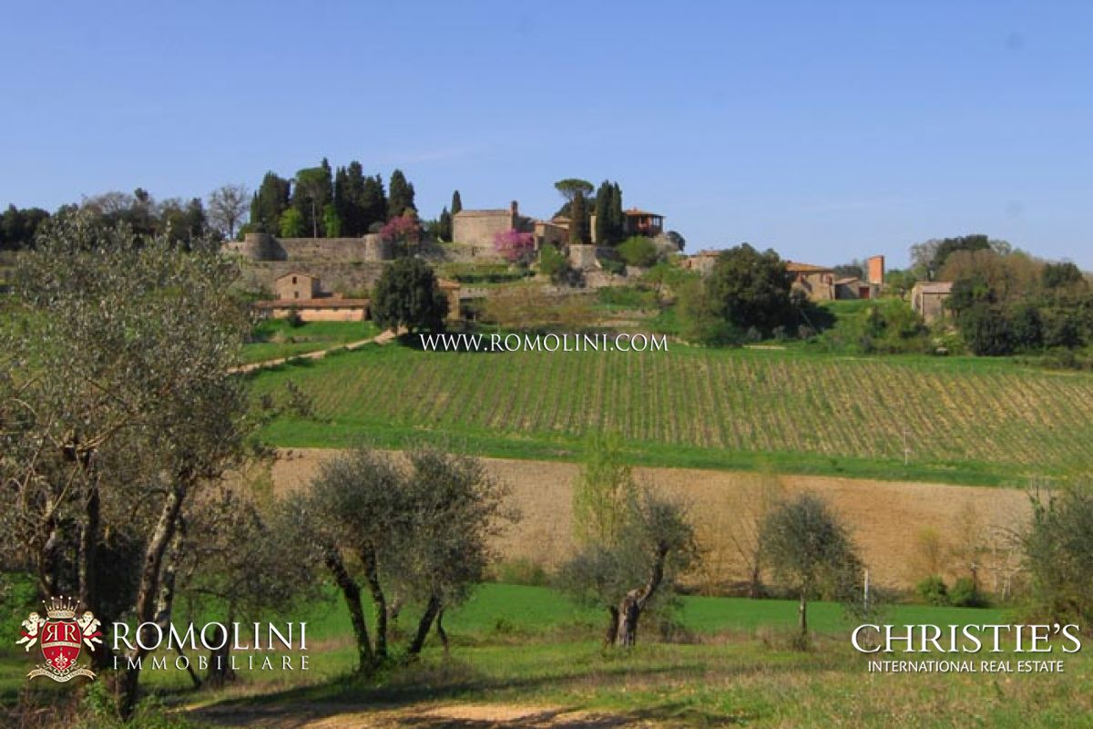 Wijngaard voor Verkoop een t Tuscany - FARM WINE ESTATE FOR SALE IN SIENA, VINEYARDS, OLIVE GROVE Siena, Italië