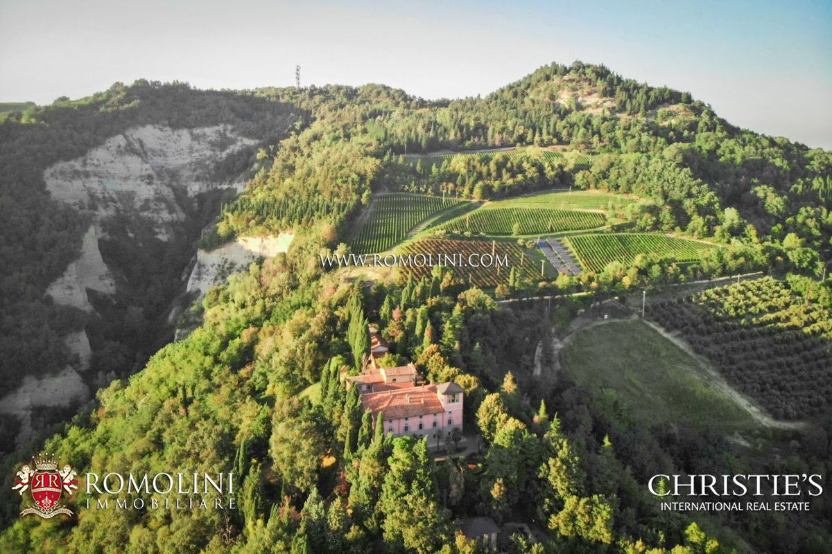 Emilia-Romagna - WONDERFUL ORGANIC ESTATE WITH VINEYARDS FOR SALE RAVENNA,  ITALY: a luxury home for sale in Ravenna, , Ravenna - Property ID:1734 |