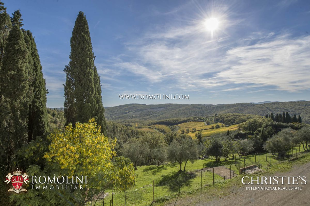Additional photo for property listing at Tuscany - WINE ESTATE WITH LUXURY VILLA IN THE HEART OF CHIANTI, TUSCANY Gaiole In Chianti, Italië