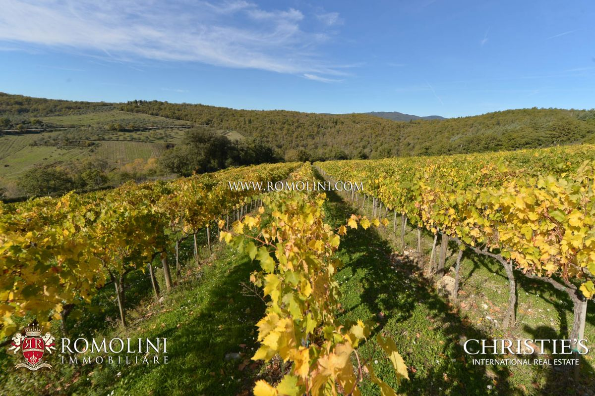 Additional photo for property listing at Tuscany - WINE ESTATE WITH LUXURY VILLA IN THE HEART OF CHIANTI, TUSCANY Gaiole In Chianti, Itália