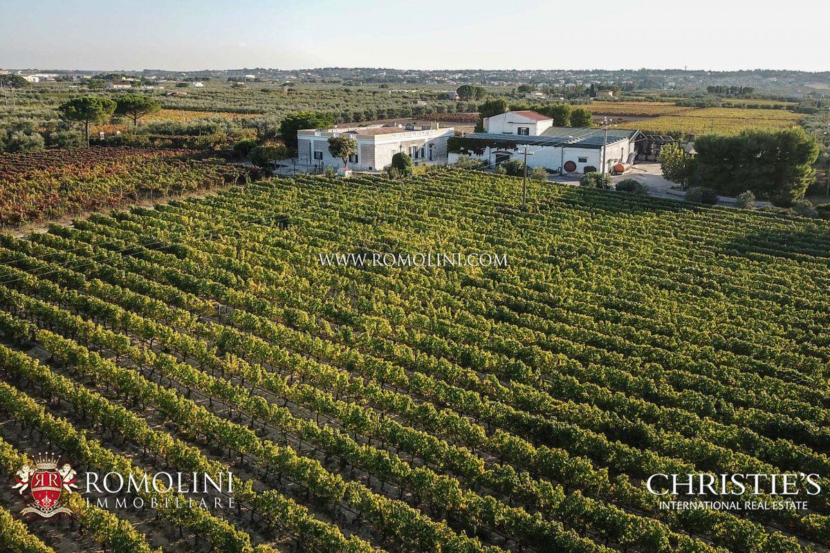 Impianti Fotovoltaici In Vendita Puglia azienda agricola vitivinicola in vendita puglia - nero di