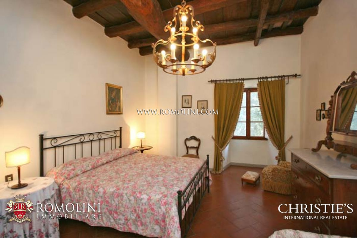 Additional photo for property listing at Tuscany - CHIANTI WINE ESTATE, OLIVE OIL MILL FOR SALE IN TUSCANY Firenze, 義大利