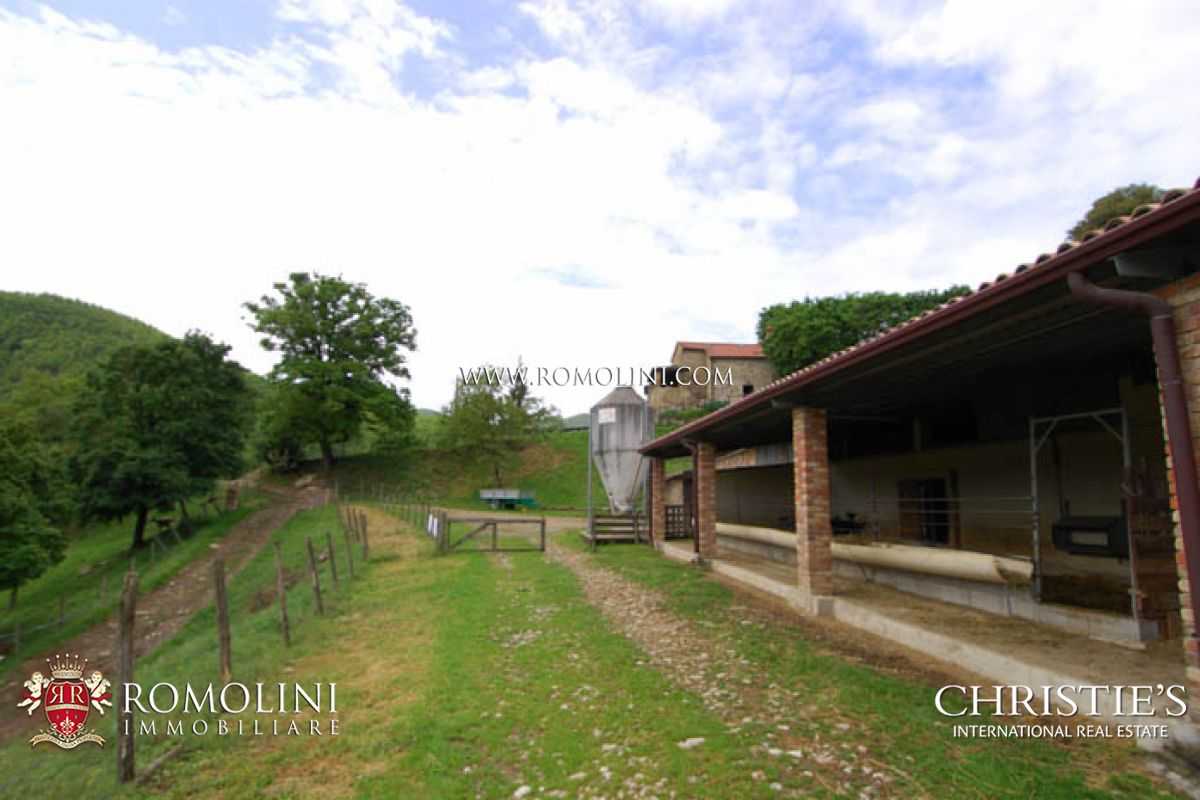 Additional photo for property listing at Tuscany - ANGHIARI TUSCANY ORGANIC AGRICULTURAL FARM ESTATE FOR SALE Anghiari, Италия