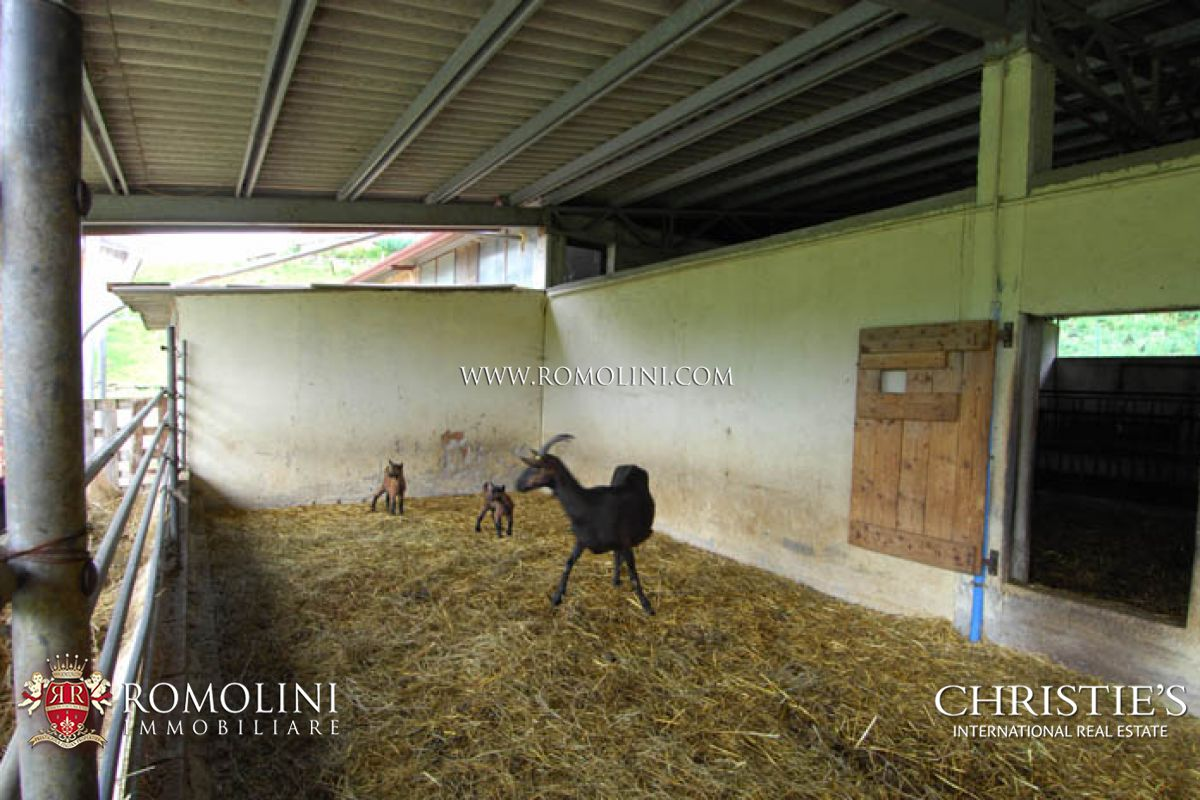 Additional photo for property listing at Tuscany - ANGHIARI TUSCANY ORGANIC AGRICULTURAL FARM ESTATE FOR SALE Anghiari, Italia