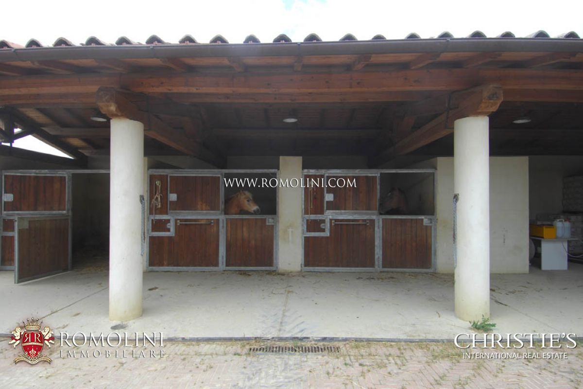 Additional photo for property listing at Tuscany - TUSCAN ESTATE WITH WINE AND HORSES FOR SALE IN SIENA, TUSCANY Siena, Ý