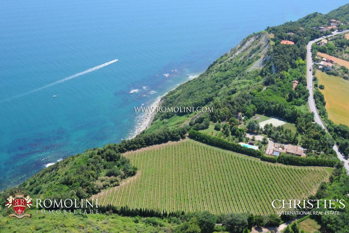 Vineyard for Sale at Marche - VILLA SEA VIEW WITH VINEYARD FOR SALE IN LE MARCHE Ancona, Italy
