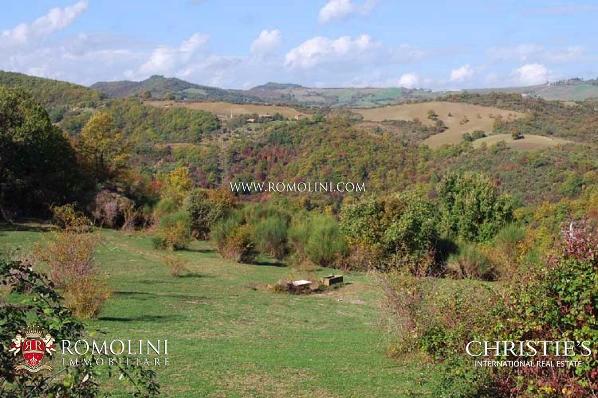 Umbria organic farm with olive grove fruit trees for for Olive trees for sale