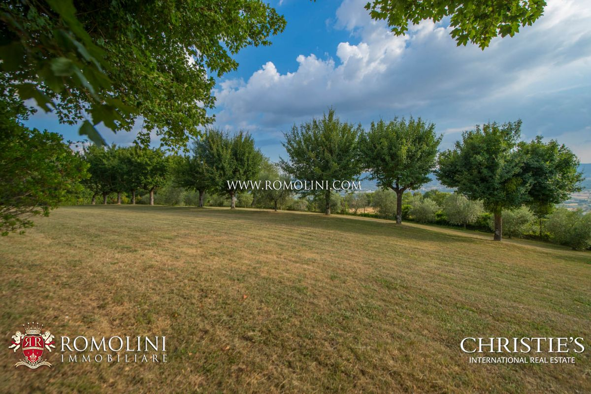 Additional photo for property listing at Tuscany - ESTATE FOR SALE IN SANSEPOLCRO, TUSCANY Sansepolcro, Itália