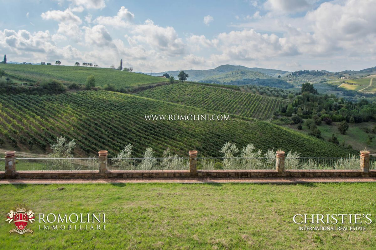 Vineyard for Sale at Tuscany - WINE CELLAR FOR SALE IN CHIANTISHIRE, FLORENCE Firenze, Italy