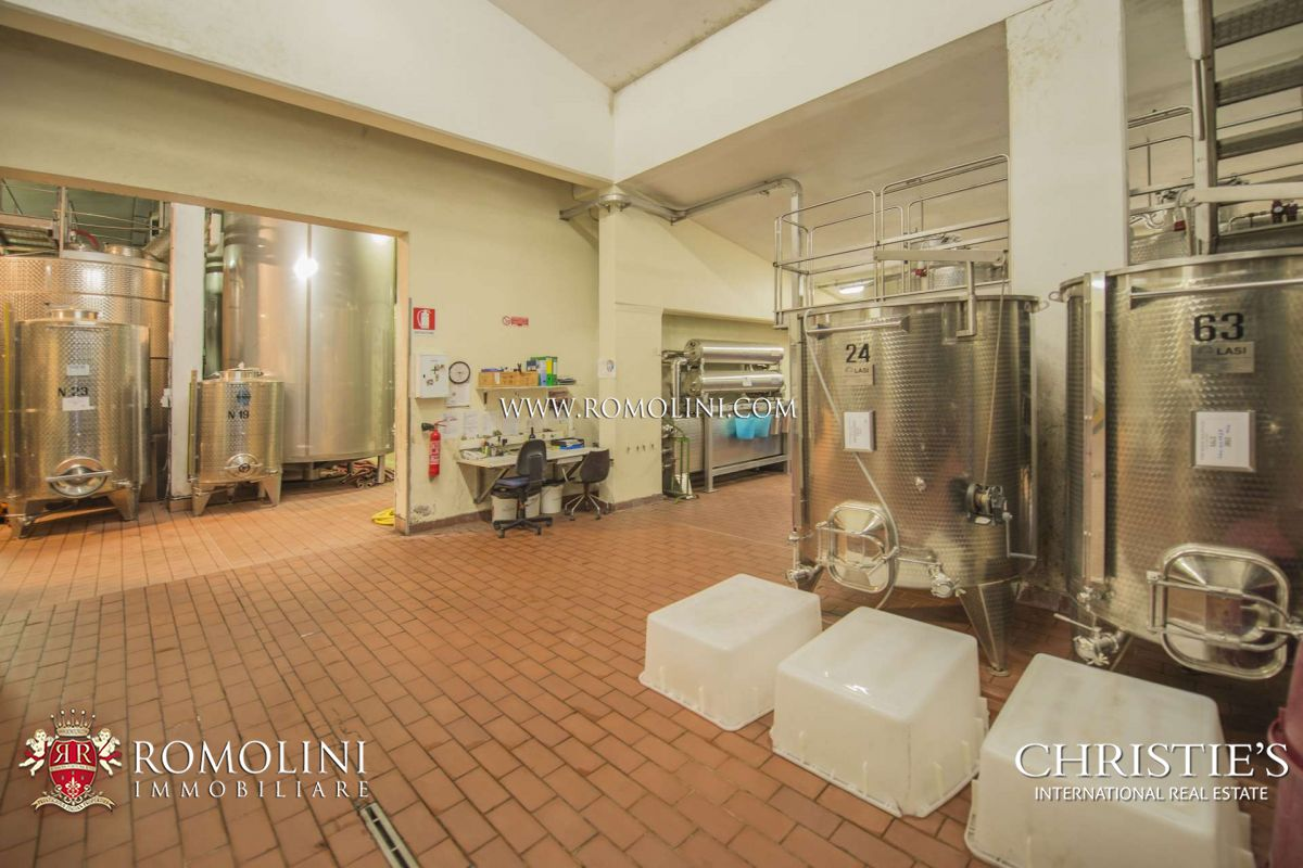 Additional photo for property listing at Tuscany - ITALIAN WINE ESTATE FOR SALE IN CHIANTI CLASSICO AREA, SIENA, TUSCANY Siena, Siena Italy