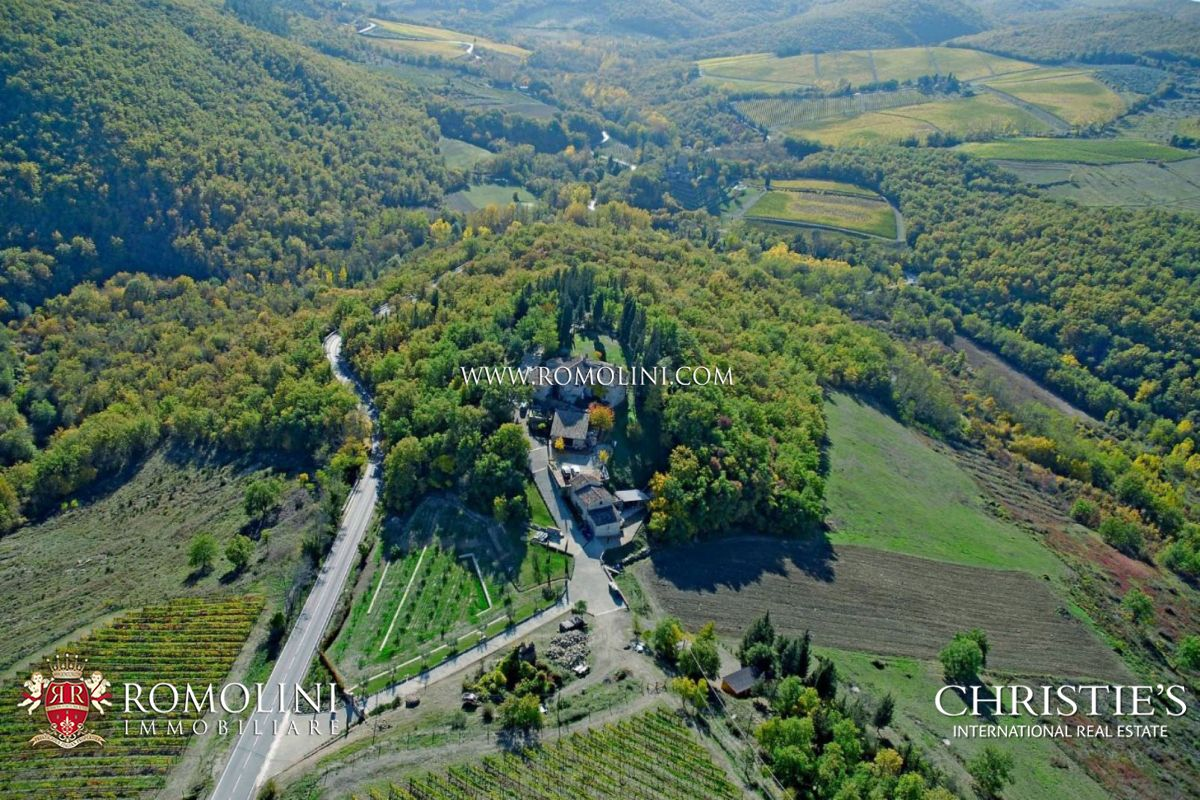 Vineyard for Sale at Tuscany - CHIANTI CLASSICO WINERY FOR SALE IN GREVE IN CHIANTI, TUSCANY Greve In Chianti, Italy