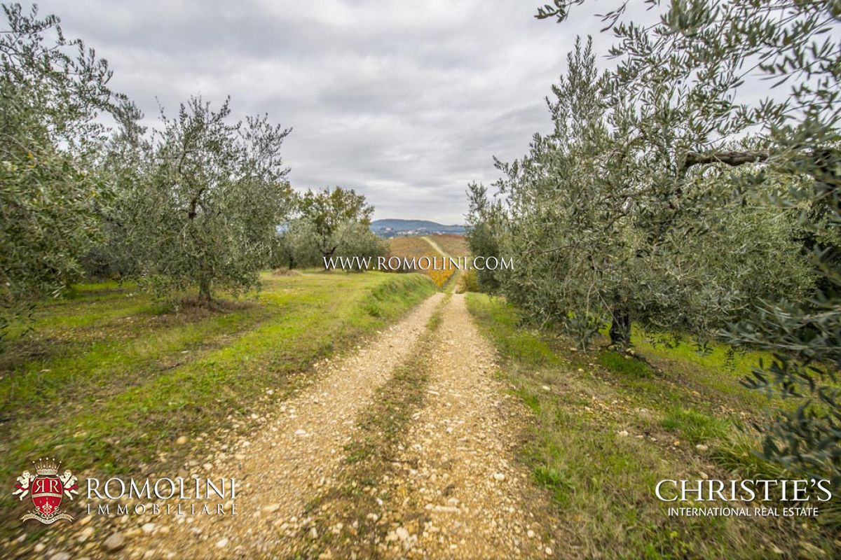 Additional photo for property listing at Tuscany - FARM WITH VINEYARD AND OLIVE GROVE FOR SALE IN SAN CASCIANO, TUSCANY 佛罗伦萨, 意大利