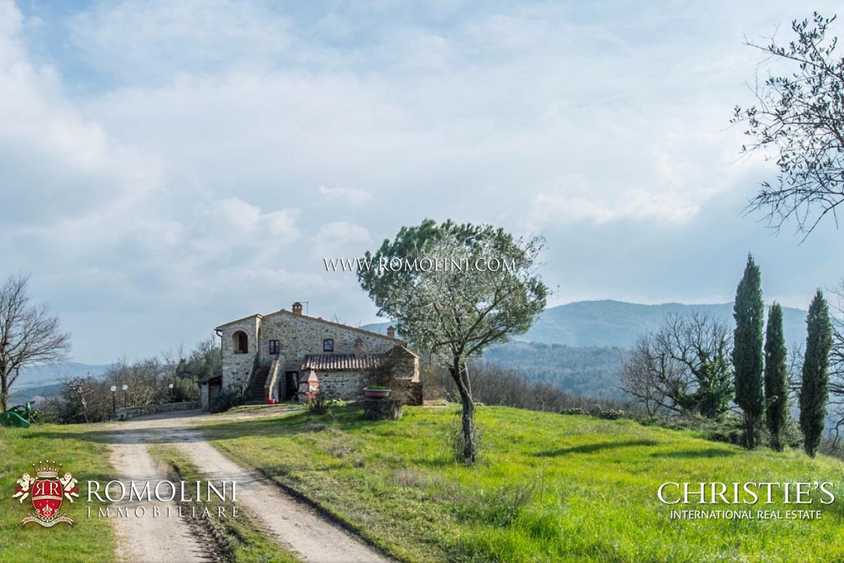 Tuscany - TUSCAN ESTATE WITH COUNTRY HOUSE AND VINEYARD FOR SALE IN VALDELSA Casole D Elsa, Italy