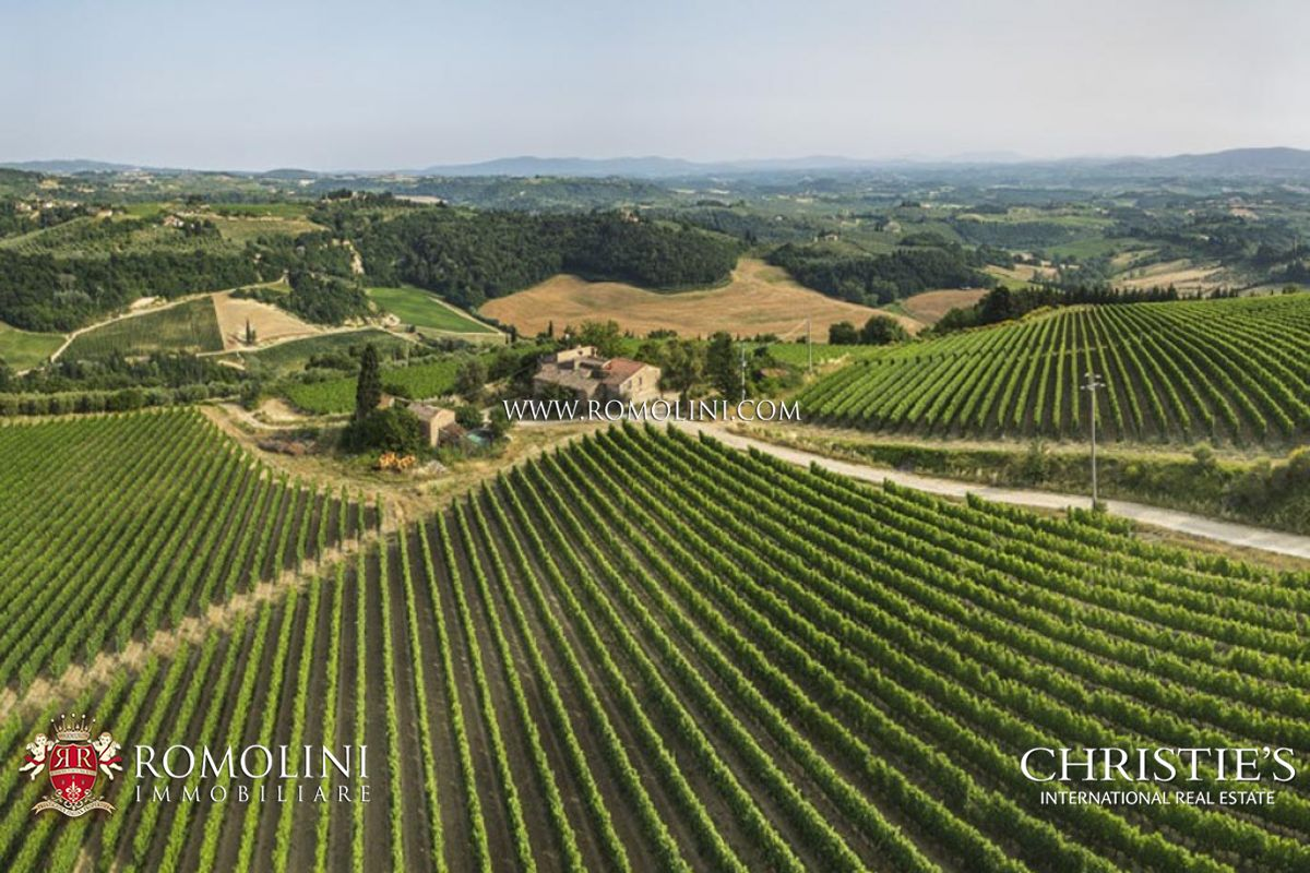 葡萄園 為 出售 在 Tuscany - CHIANTI COLLI FIORENTINI, ESTATE WITH VINEYARD, OLIVE GROVE FOR SALE Certaldo, 義大利