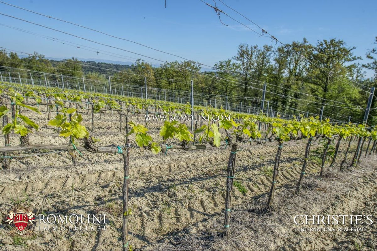 Additional photo for property listing at Tuscany - EXCLUSIVE ESTATE, LUXURY VILLA, VINEYARDS AND OLIVE GROVE FOR SALE Palaia, 이탈리아