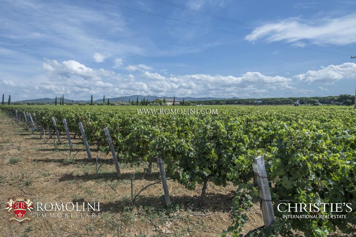 Domaine pour l Vente à Tuscany - WINE ESTATE FOR SALE ON THE TUSCAN COAST Bolgheri, Italie